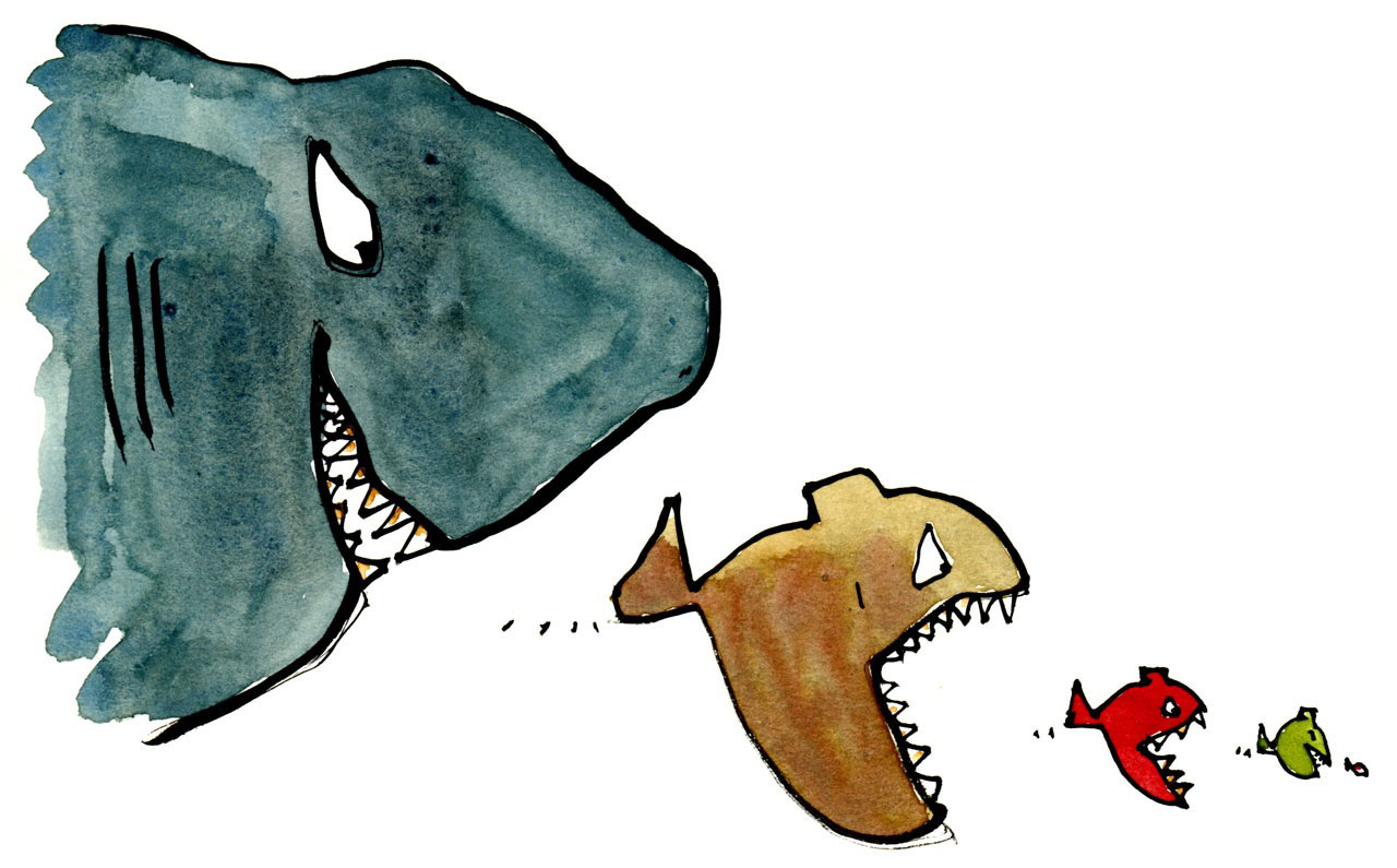 pesce grande mangia pesce piccolo